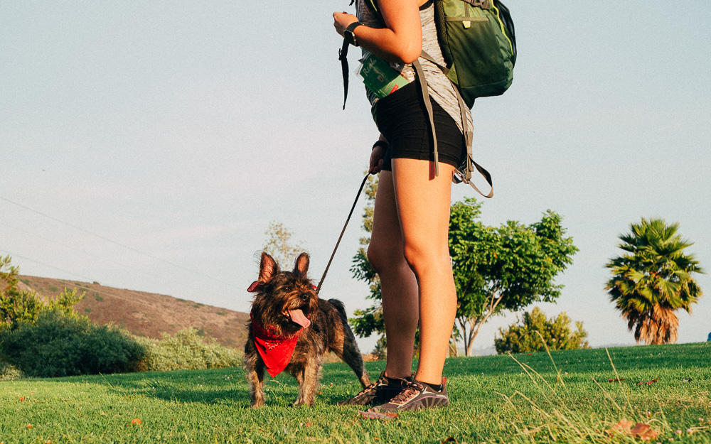 Buck Moon Pack Hike with Real Pet Food