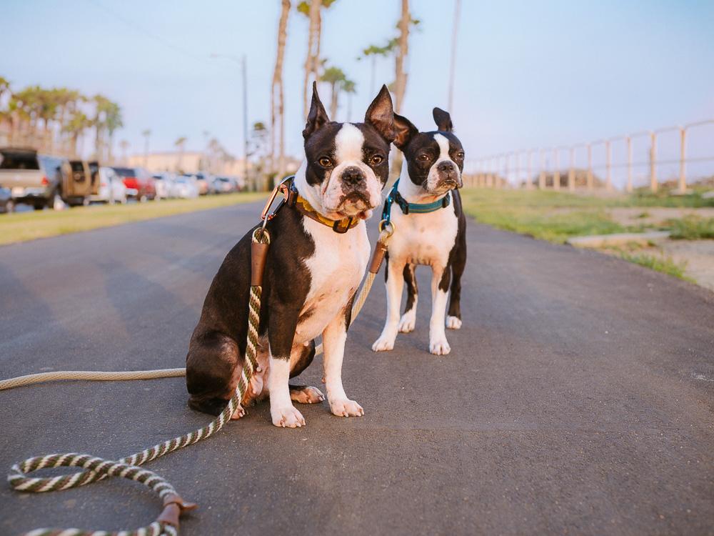 Huntington Beach Meet Up
