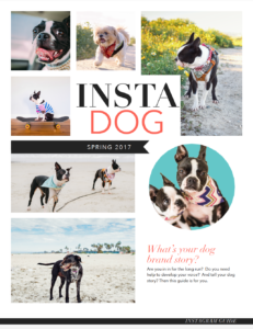 How To Use Instagram For Your Dog