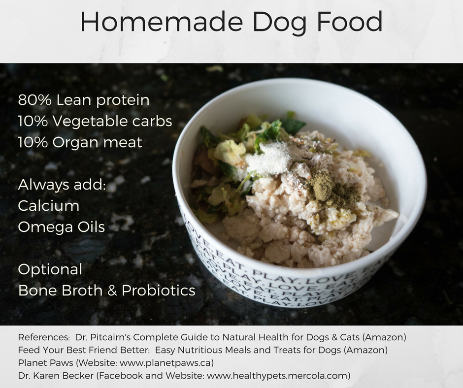 Basic Foundation For Homemade Dog Food Maggielovesorbit Com