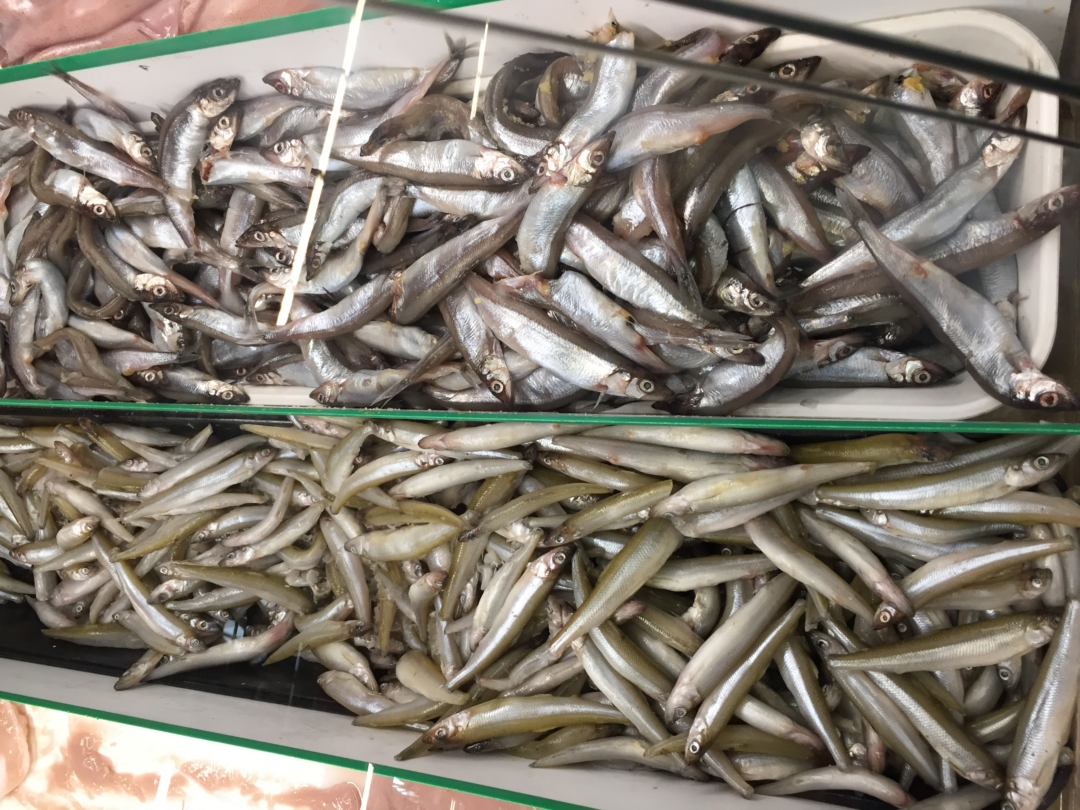 smelt and sardines are a great source of Omega 3