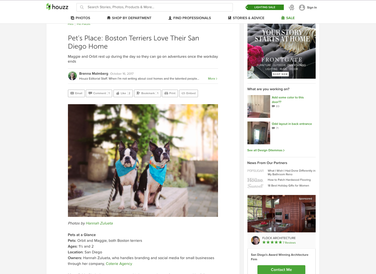 Maggie and Orbit featured in Houzz