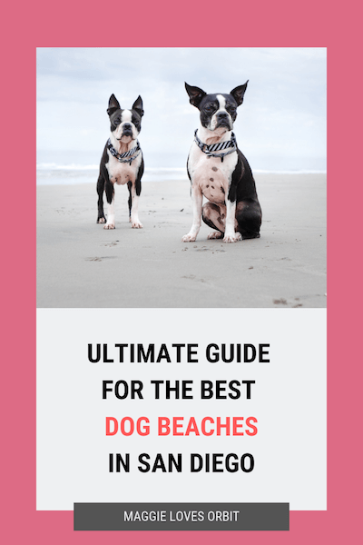 We Go To The Beach Every Day And Share Why What Like About