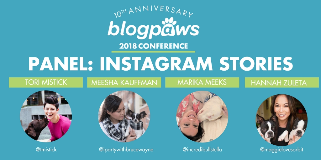 Blogpaws speakers instagram stories