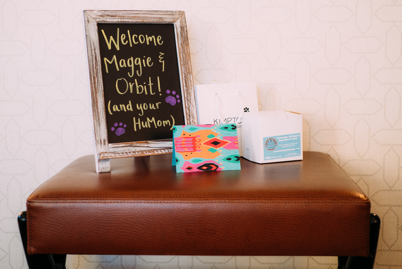 Hotel Solamar Welcome Pet Amenity
