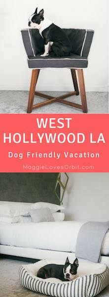 west-hollywood-la-peer-hotel-pinterest-graphic-dog-friendly-vacation