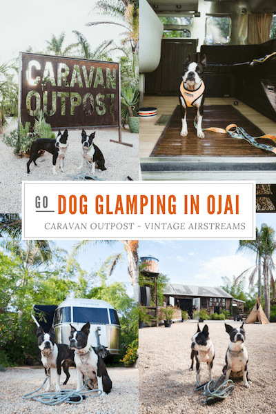 MaggieLovesOrbit-Ojai-dog-friendly-caravan-outpost-image-for-pinterest