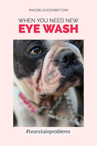 eyestain-tearstain-solutions-dogs
