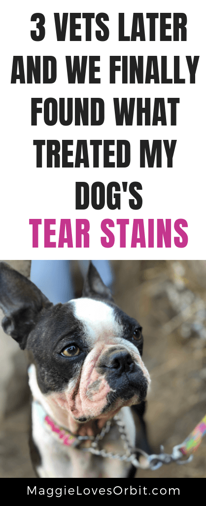 Does your dog have red, rusty tear stains?  Do you want a natural approach to treat your dog from the inside out?  We share what we've been adding to their food to stop the tear stains from producing.
