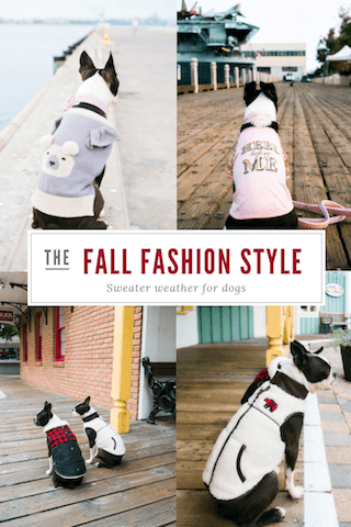 fashion-sweaters-for-dogs