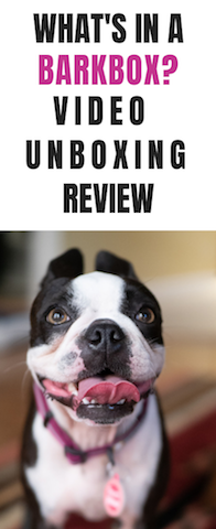 Curious to know what's in a barkbox?  The mailman came and delivered ours and we share our video unboxing review.