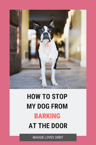 How to stop my dogs from barking from the doorbell when you don't have a helper to ring the doorbell for you.