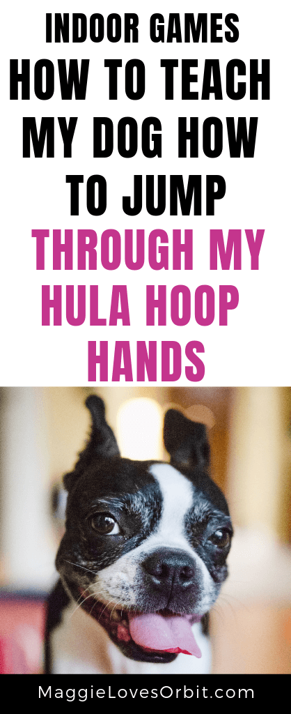 We learned how to teach Maggie and Orbit our two dogs - how to jump through my hula hoop hands.