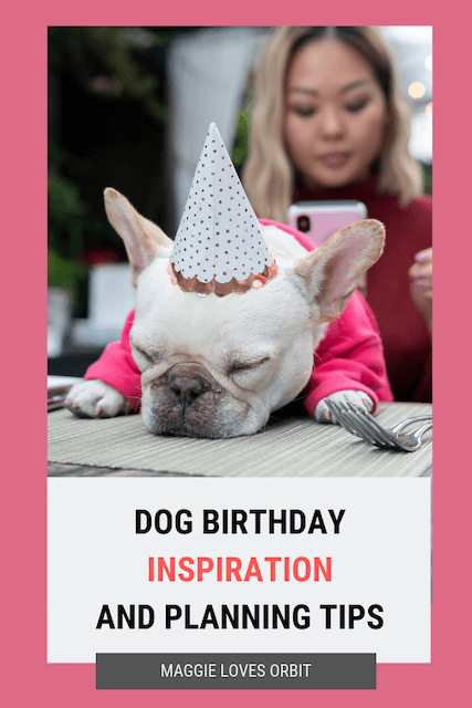 dog-birthday-inspiration