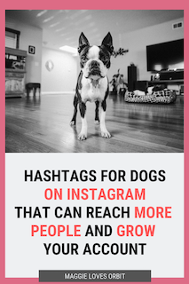 Top Instagram Hashtags Quote