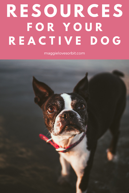 Reactive Dog Resources