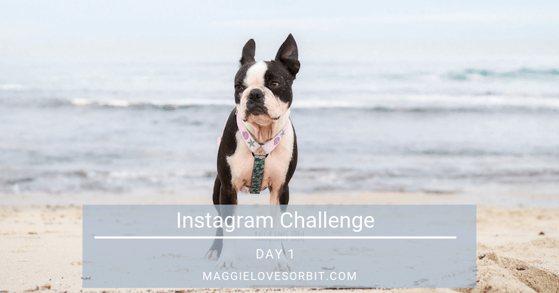 Instagram Challenge:  Day 1