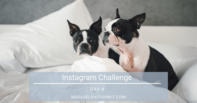 Instagram Challenge Day 4