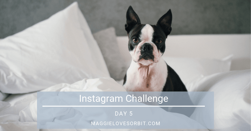 Instagram Challenge Day 5