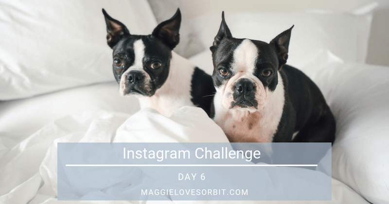 Instagram Challenge Day 6