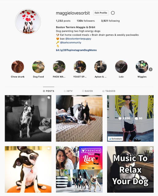 instagram bio dog mom
