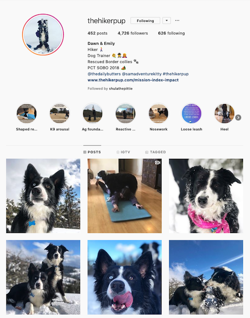 Instagram Bio - Training Advice