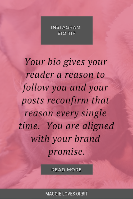 Instagram bio tip quote