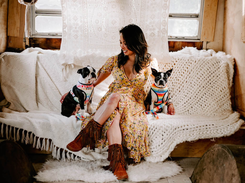 Own a Dog Business?  These 10 Instagram Tips Are For You