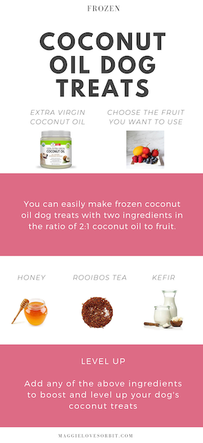 recipe for coconut oil and fruit dog treats