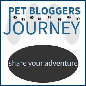 pet-bloggers-journey-400x400
