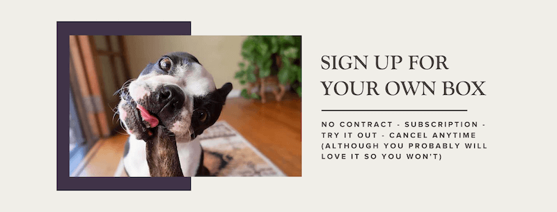 real-dog-box-sign-up