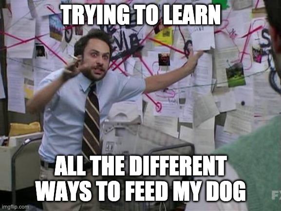 dog food meme