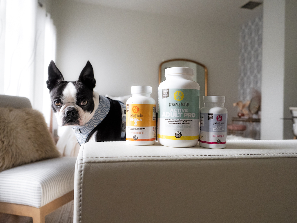Should commercial dog foods be supplemented with a good quality multivitamin?